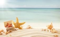 清凉沙滩图片