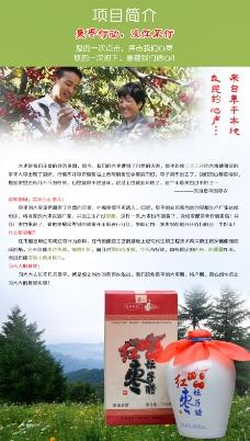 集枣行动项目宣传海报