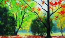 树林之秋图片