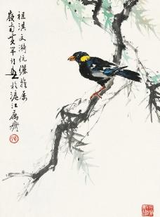 柳枝小鸟图片