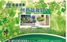 盆栽DIY图片