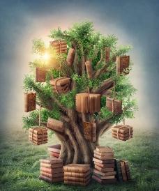 挂满礼物的树图片