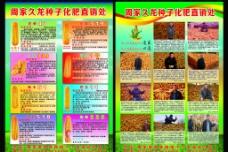 久龙种子图片