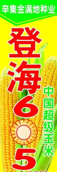 玉米设计背景图片高清psd下载