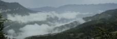 云雾缭绕娄水畔图片