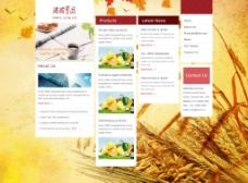 黄色食品网站高清psd下载