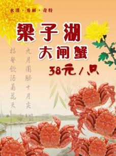 梁子湖大闸蟹图片