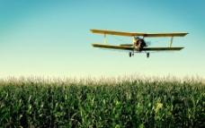 玉米地上的喷雾机图片