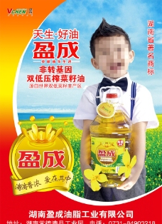 盈成菜籽油海报图片
