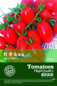 番茄种子包装袋