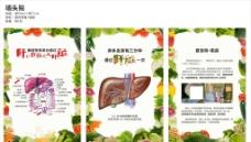 肝脏海报图片