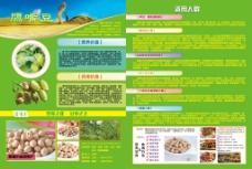 鹰嘴豆宣传单