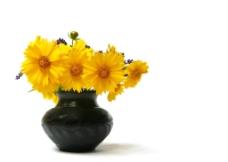 黄色插花图片