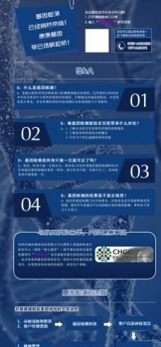 生物基因单页图片
