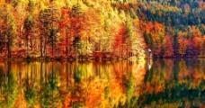 秋景倒影图片