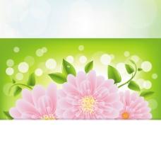 矢量花朵 粉色小花 浪漫背景图片