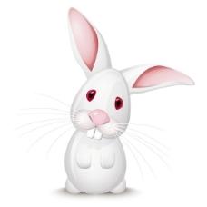 大耳兔海报