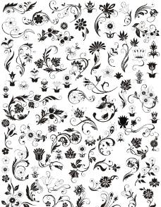炫彩花纹模板