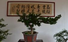 白云山景区图片