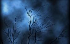 黑色树木背景