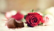 巧克力玫瑰图片