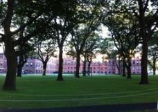 波士顿大学图片
