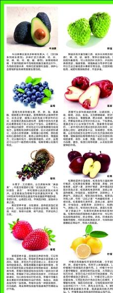 进口水果介绍图片