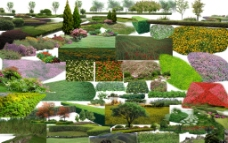草坪草地花圃类素材图片