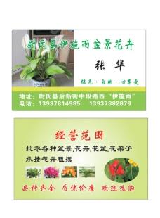 花卉盆景名片图片