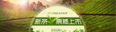 淘宝新茶震撼上市海报psd素材图片