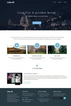 美国白宫建筑网站模板图片