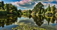 梦幻湖边森林美景图片