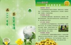采茶宣传页图片