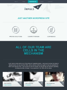 商业web设计公司图片