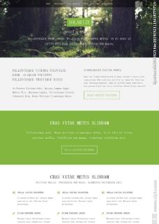 绿色森林主题模板图片