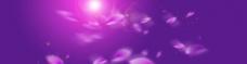 浪漫紫色梦幻背景图片