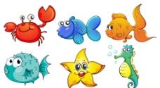 海洋生物圖片
