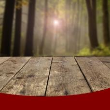 大森林木板主图制作