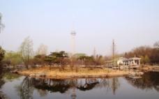 玉渊潭公园风光图片