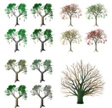 树素材图片
