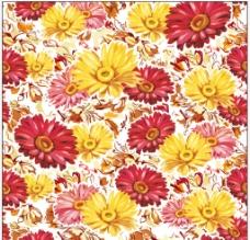 复古优雅菊花图片