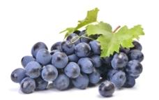紫葡萄图片